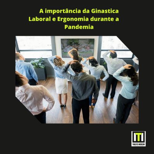 A importância da Ginástica Laboral e Ergonomia durante a Pandemia
